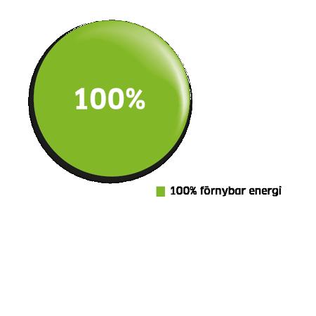 100 % förnybar energi